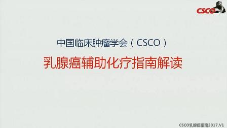 乳腺癌 指南解读 傅佩芬:CSCO乳腺癌指南(2017v1)辅助化疗解读