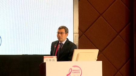 乳腺癌 外科讲坛 王林波:早期乳腺癌的规范化及个体化治疗