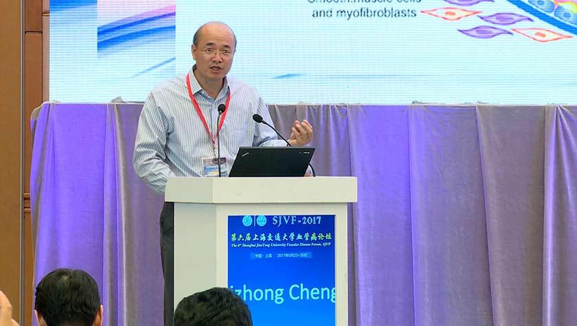 血管病 外科讲坛 腔内治疗 jizhongcheng:动静脉内瘘血管内膜增生机制研究进展