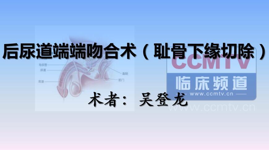 泌尿系疾病 手术 吻合术  耻骨 吴登龙:后尿道端端吻合术(耻骨下缘切除)