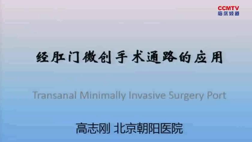 结直肠癌 外科讲坛 微创 高志刚:经肛门微创手术通路的应用