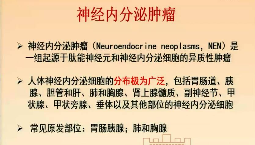神经内分泌瘤 综合治疗 谭煌英:神经内分泌肿瘤——中日医院MDT经验