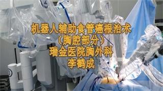 李鹤成:达芬奇食管癌根治术-胸腔