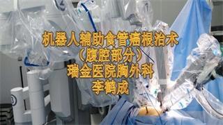 李鹤成:达芬奇食管癌根治术-腹腔