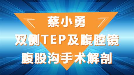 蔡小勇:双侧TEP及腹腔镜腹股沟手术解剖