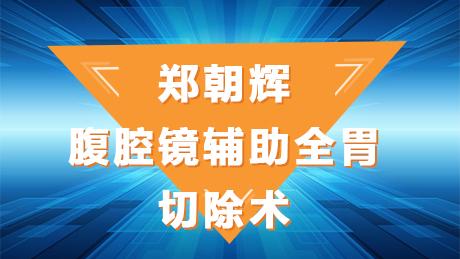 郑朝辉:腹腔镜辅助全胃切除术D2
