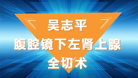 肾癌 手术 微创 腹腔镜     吴志平:腹腔镜下左肾上腺全切术
