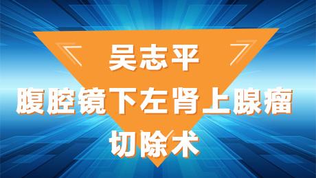 肾上腺瘤 手术 微创 腹腔镜 吴志平:腹腔镜下左肾上腺瘤切除术