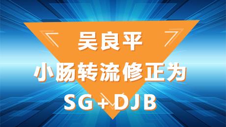 吴良平:小肠转流修正为SG+DJB