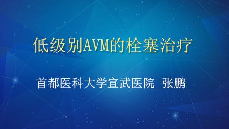 AVM 栓塞治疗 张鹏:低级别AVM的栓塞治疗