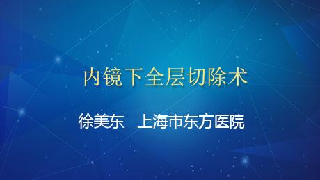 内镜下全层切除术——上海市东方医院徐美东
