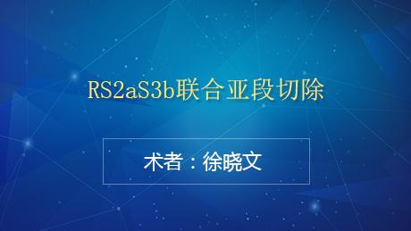 徐晓文:RS2aS3b联合亚段切除