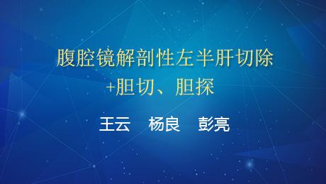 王云、杨良、彭亮:腹腔镜解剖性左半肝切除+胆切、胆探