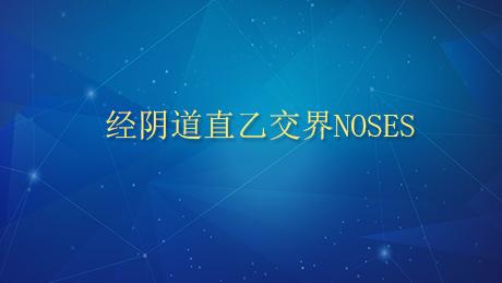 NOSES 经阴道直乙交界NOSES