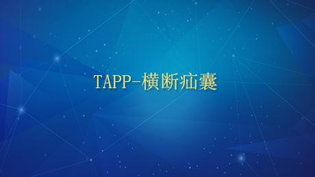 TAPP-横断疝囊