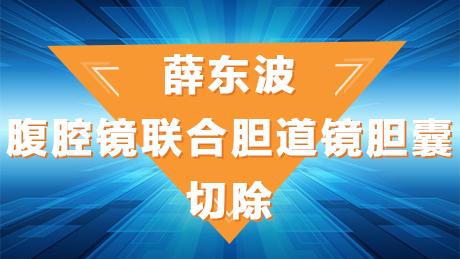 薛东波:腹腔镜联合胆道镜胆囊切除