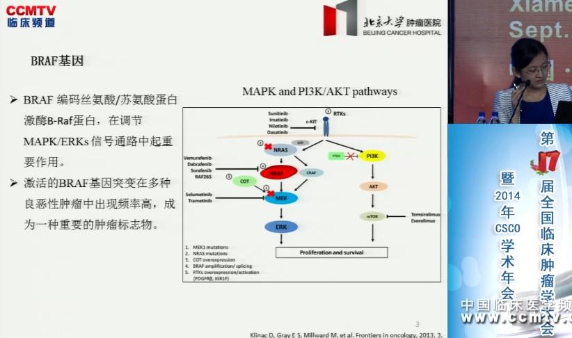 免疫组化方法检测brafv