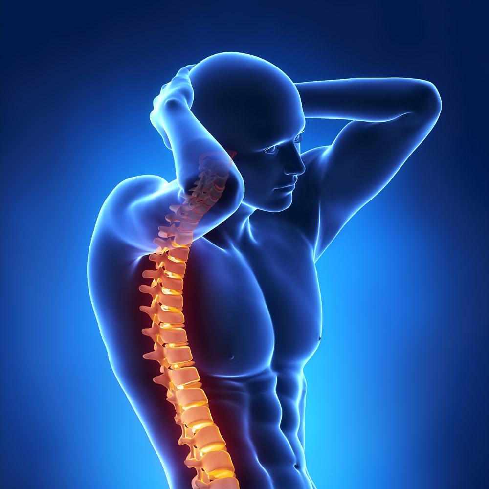 强直性脊柱炎影像学自然史及其临床意义