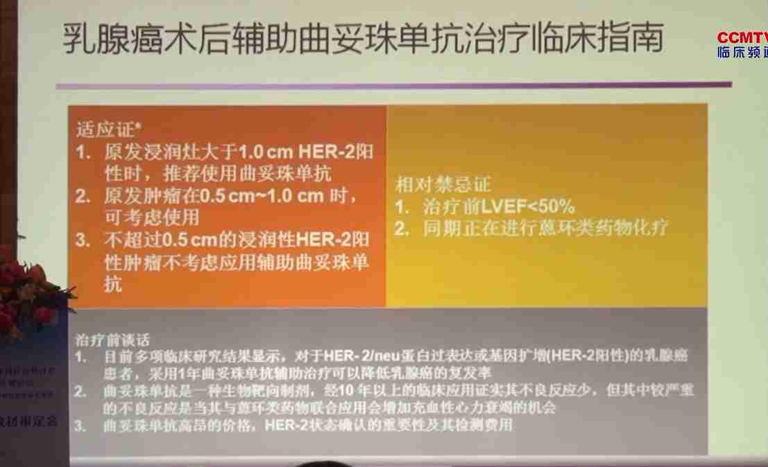 乳腺癌 诊疗策略 宋国红:乳腺癌辅助治疗原则及进展
