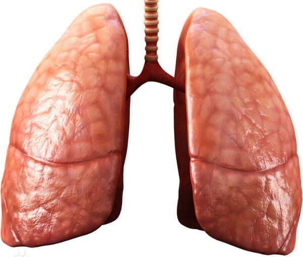rhTPO治疗肺癌患者化疗后血小板减少一例