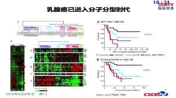 乳腺癌 综合治疗 辅助治疗 系统治疗 刘强:不同分子亚型乳腺癌的化疗地位