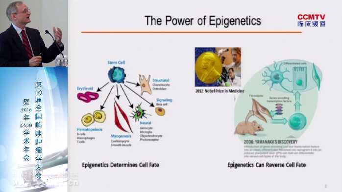 癌症 基础医学 表观遗传学 C Carpenter:肿瘤表观遗传学修饰