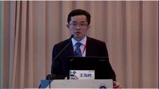 肺癌 外科讲坛 微创  王海峰:肺部小结节的外科处理原则