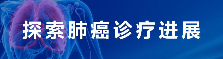 2013探索肺癌诊疗进展