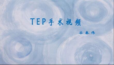 谷春伟:TEP手术视频