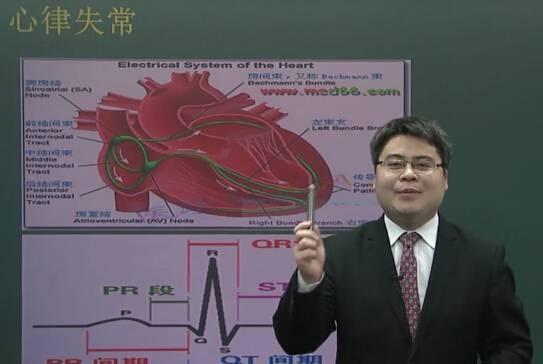 心血管系统:心律失常(一)
