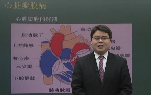心血管系统:心脏瓣膜病(一)