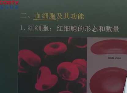 生理学:血细胞及其功能