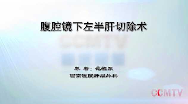 范毓东:腹腔镜下左半肝附加第Ⅶ段肝部分切除术